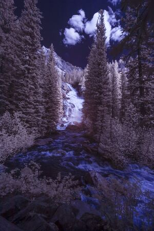 A river on a mountain in Montana taken in Infra Red. 版權商用圖片 - 130361352