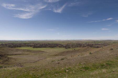 Grassy fields on the Prairie in Montana