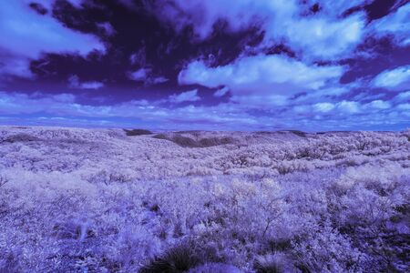 The Blue Mountain in infrared in New South Wales, Australia