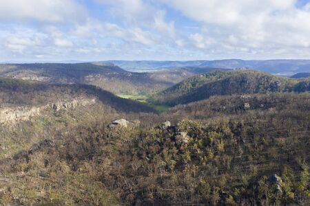 A forest valley affected by bush fire in The Blue Mountains in Australia