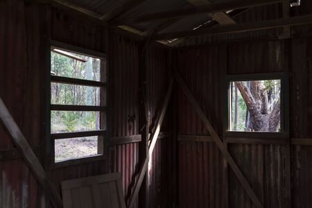 Inside an old building looking out the window at a forest.1.jpg Stock Photo