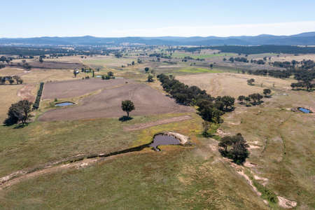 Drone aerial photograph of large green agricultural fields in regional New South Wales in Australia