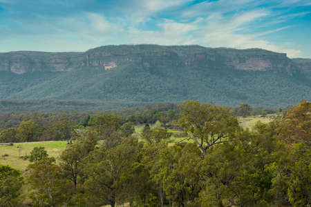 Photograph of the valley wall and Eucalyptus trees in Megalong Valley in The Blue Mountains in Australia