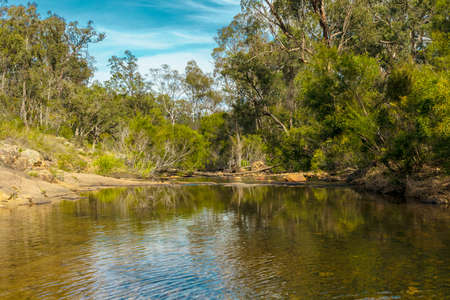 Photograph of Megalong Creek surrounded by Eucalyptus trees in the Megalong Valley in The Blue Mountains in Australia