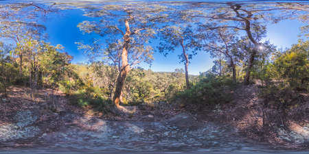 Spherical panoramic photograph of bushland near a valley in the Hawkesbury region of The Blue Mountains