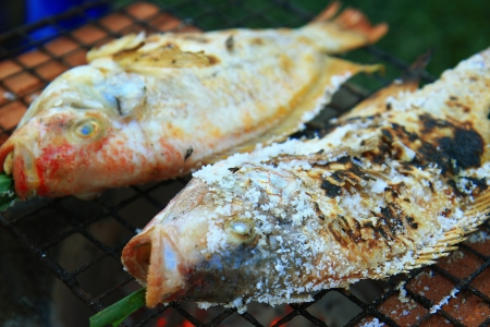 The thailand fish grilled  Stock Photo