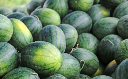 green watermelon in thailand photo