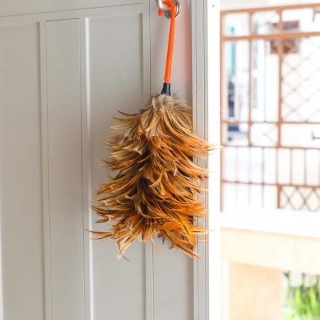 feather duster on white door Stock Photo - 21055367