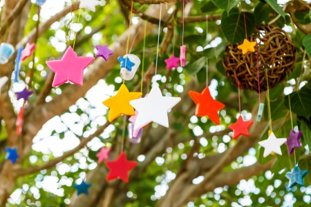 colorful candle stars on tree photo