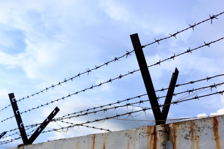 Barbed wire for protect home  photo