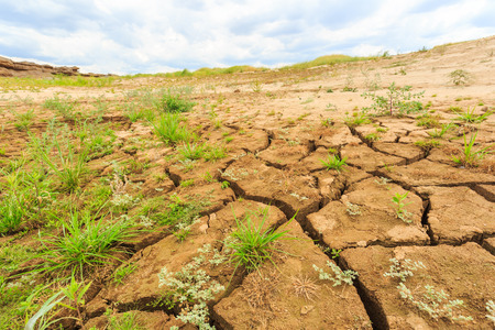 surface crack of  soil in arid area photo