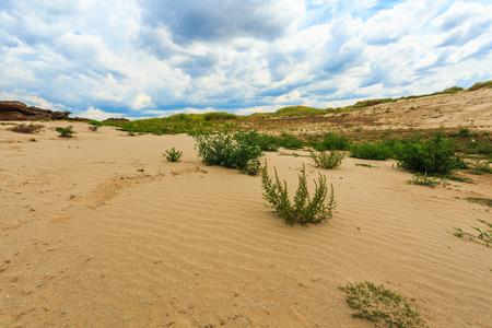 sand desert view Stock Photo