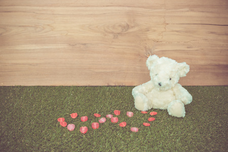 color tone: Romantic Bear on vintage retro color tone