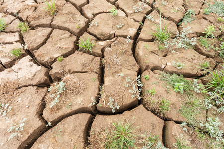 surface crack of soil in arid area Stock Photo