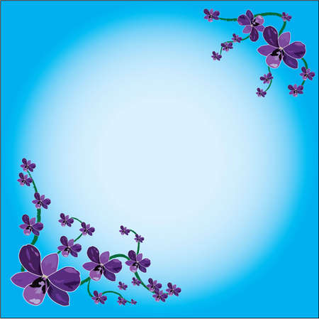 orchid in background frame Vector