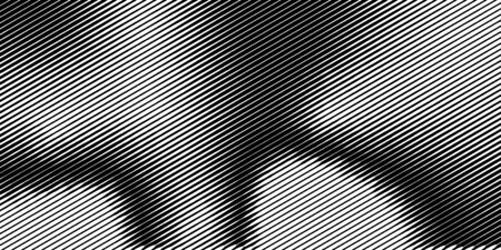 Abstract monochrome half-ton line. White and black texture with lines. Vector surface design Çizim