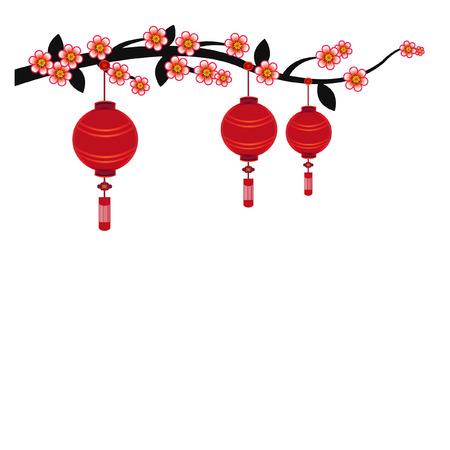 peach blossom: Chinese lantern in white background