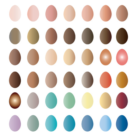 buena postura: Huevos - Ilustraci�n