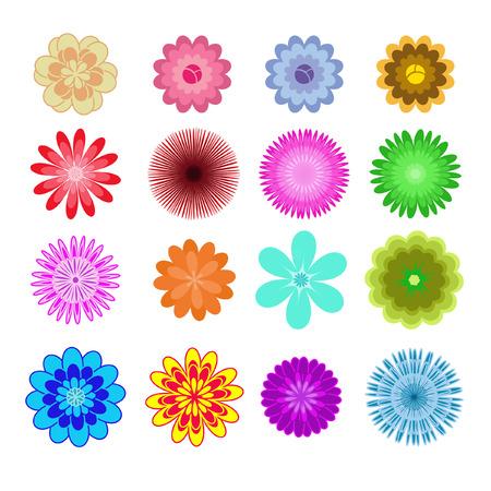 花びら: 重なり合う花びら