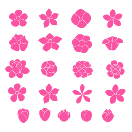 daisy pink: Pink flower icon set on white background