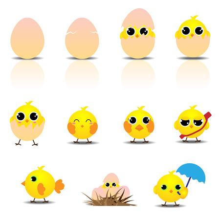 Cute Baby Chicken Cartoon Set