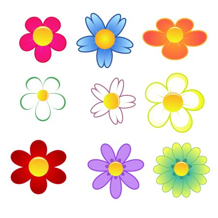 Colorful cute flowers on white background
