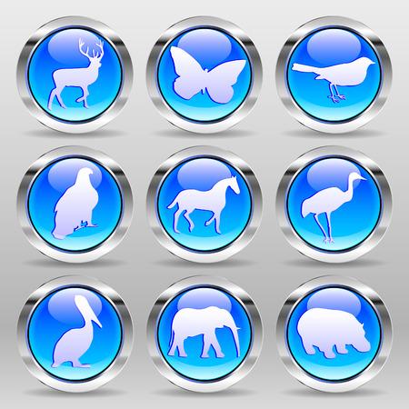 glass button: Vector Blue Glass Button - Animals Set