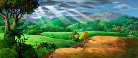 La luz del sol brillando sobre el terreno con árboles frutales y otras plantas. Foto de archivo - 202587