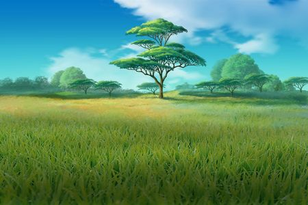 tall grass: Trees growing on a meadow with tall grass. Stock Photo