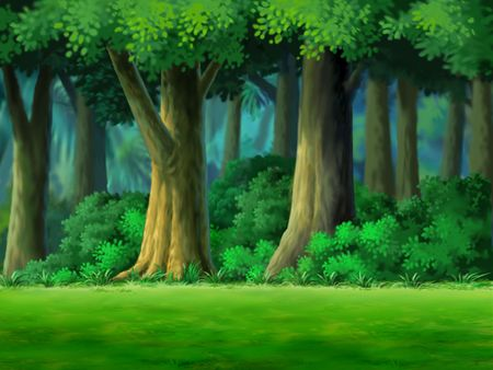 shrubs: Trees and bushes in the woods.