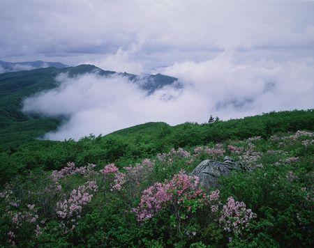 Mountain View Stock Photo - 227575