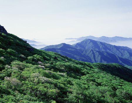 Mountain View Stock Photo - 227574