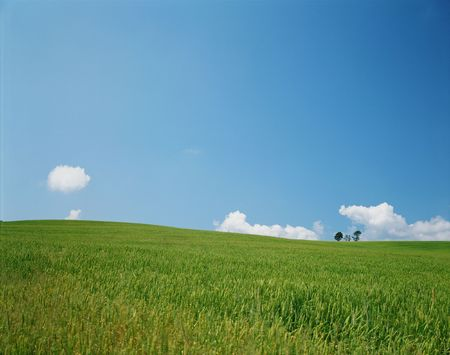 expansive: Field