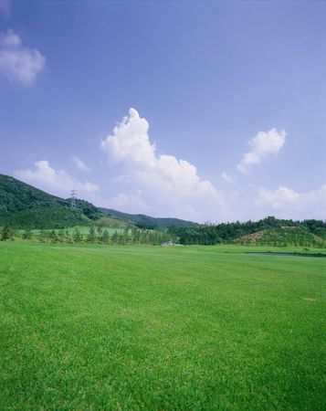 outdoors,field,spring,plants,grass,tree,sky,clouds,green,nature,mountain photo