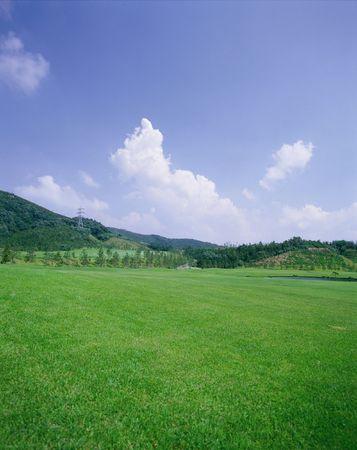 outdoors,field,spring,plants,grass,tree,sky,clouds,green,nature,mountain 版權商用圖片