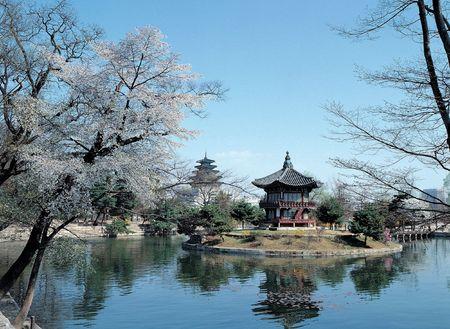 Korean Landscape