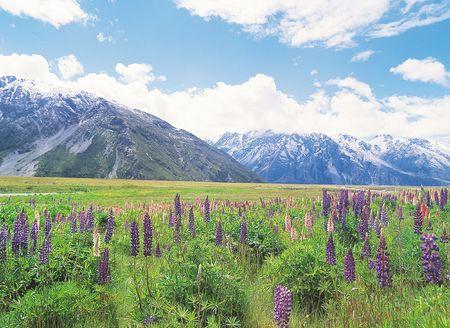 Nature View Stock Photo - 289430