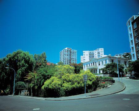 en mont�e: La sempiternelle route avec des arbres Banque d'images