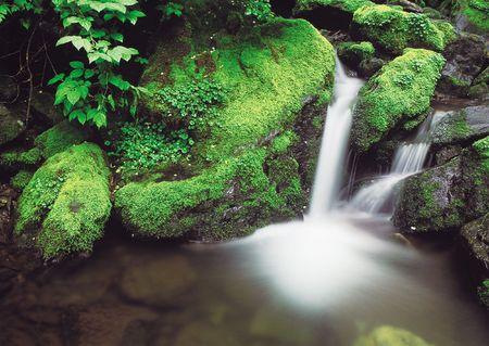 Nature Scenery Stock Photo