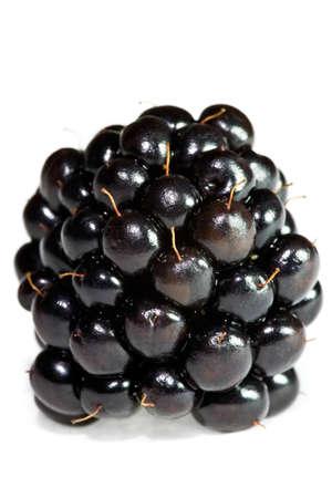 Closeup of single blackberry isolated on white background. photo