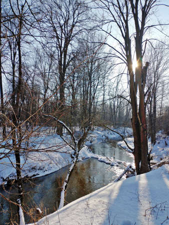 a winter landscape a river flows among the snow-covered shores, tall trees on the shore that reflect in the water