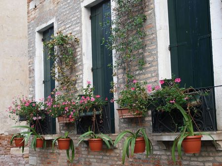 flowerbeds: Venetian flowerbeds