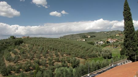 Vineyards and olive fields in Chianti, Tuscany Stock Photo - 6710863