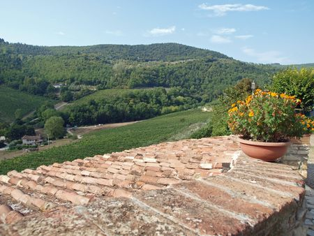 chiantishire: terrace with the view on vineyards in Tuscany