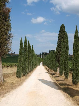 Tuscan landscape in the best edition