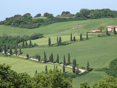 The landscape of the Val d�Orcia. Tuscany. Italiy photo