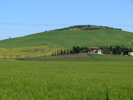 valdorcia: Villa in Tuscany amongst   fields and olive groves
