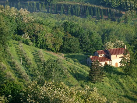 valdorcia: Villa in Tuscany amongst  olive groves