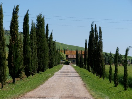 orcia: The landscape of the Val d�Orcia. Tuscany. Italiy