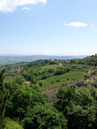 montalcino: The hills around Montalcino, Tuscany, Italy